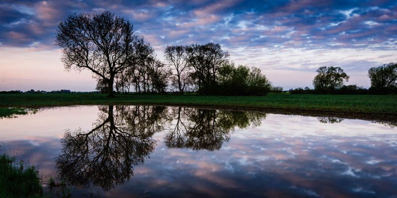 Sunrise at the Spinney Lincolnshire Landscape Photography by Robin Ling