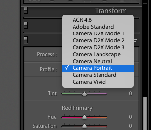 Adobe Lightroom Develop Module Camera Calibration Profiles