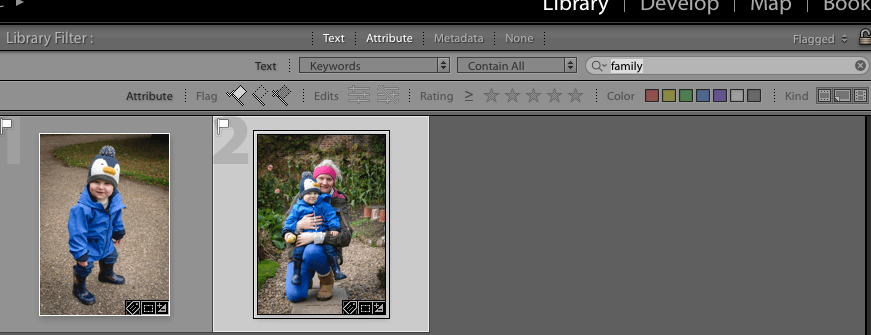 keyword filter in library module in adobe lightroom