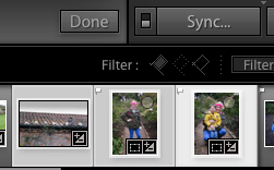 lightroom develop module sync button